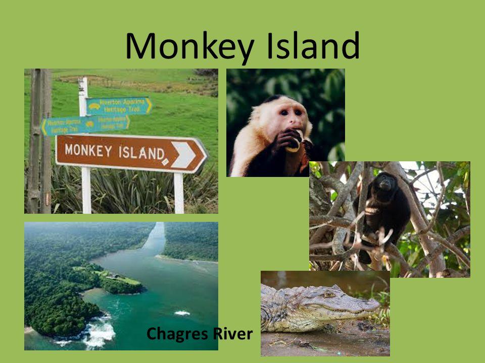 Monkey Island Chagres River