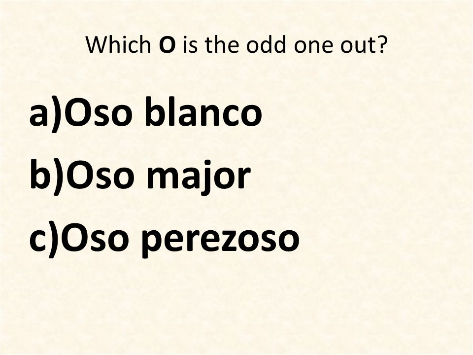 Which O is the odd one out? a)Oso blanco b)Oso major c)Oso perezoso