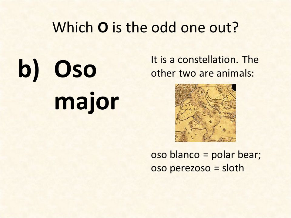 Which O is the odd one out? b)Oso major It is a constellation. The other two are animals: oso blanco = polar bear; oso perezoso = sloth