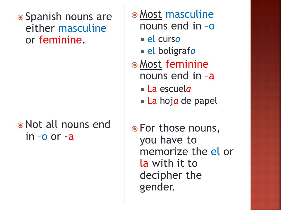  Spanish nouns are either masculine or feminine.