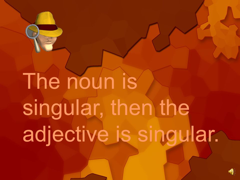 The noun is singular, then the adjective is singular.