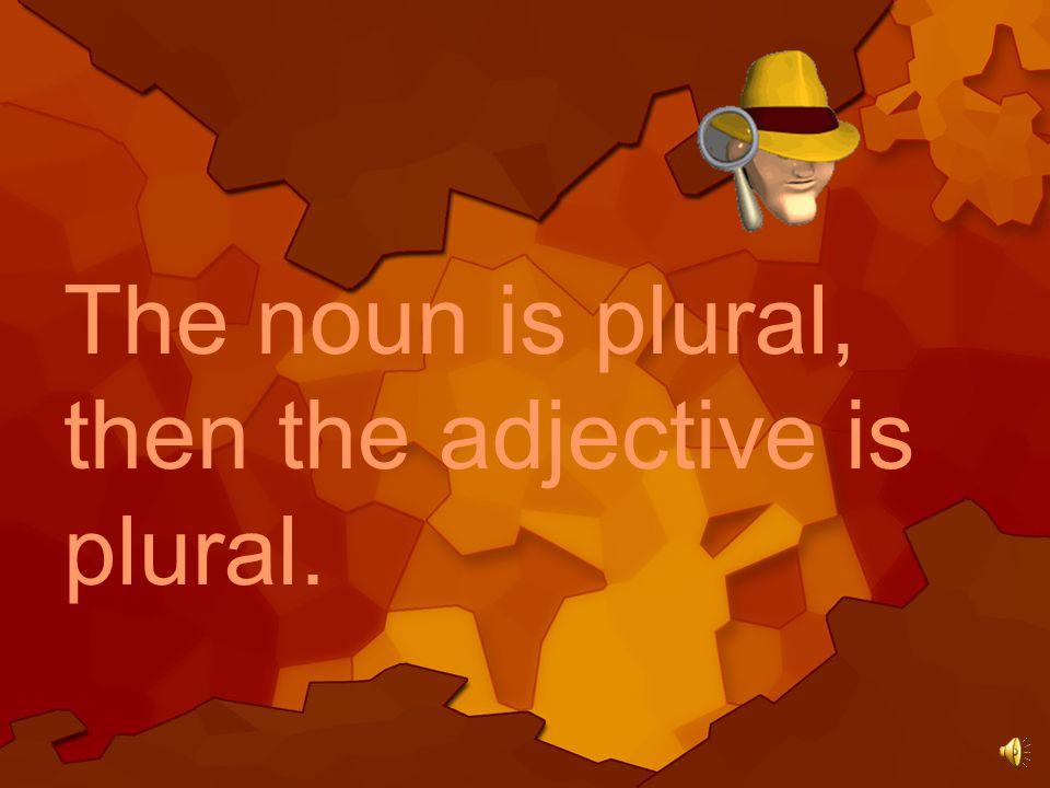The noun is singular, then the adjective is singular.