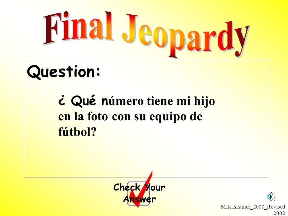 M.K.Klamer_2000_Revised 2002 Question: Check Your Answer ¿ Qué n úmero tiene mi hijo en la foto con su equipo de fútbol?
