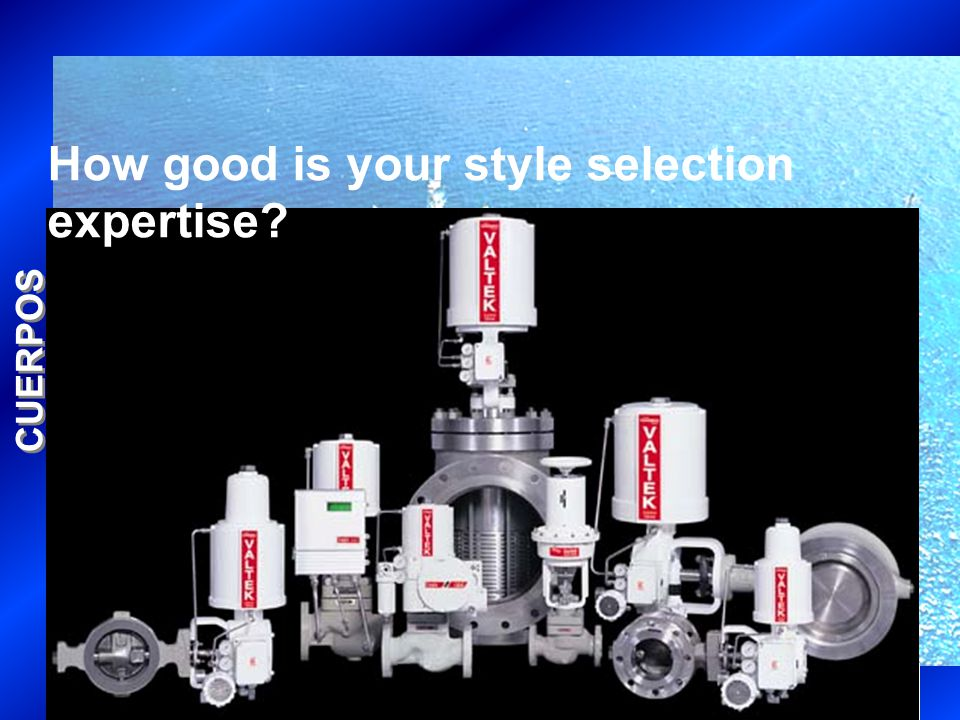 CUERPOS How good is your style selection expertise