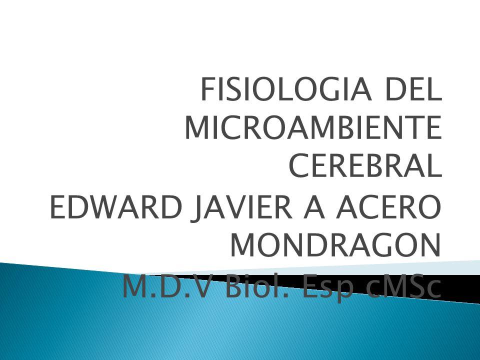 FISIOLOGIA DEL MICROAMBIENTE CEREBRAL EDWARD JAVIER A ACERO MONDRAGON M.D.V Biol. Esp cMSc