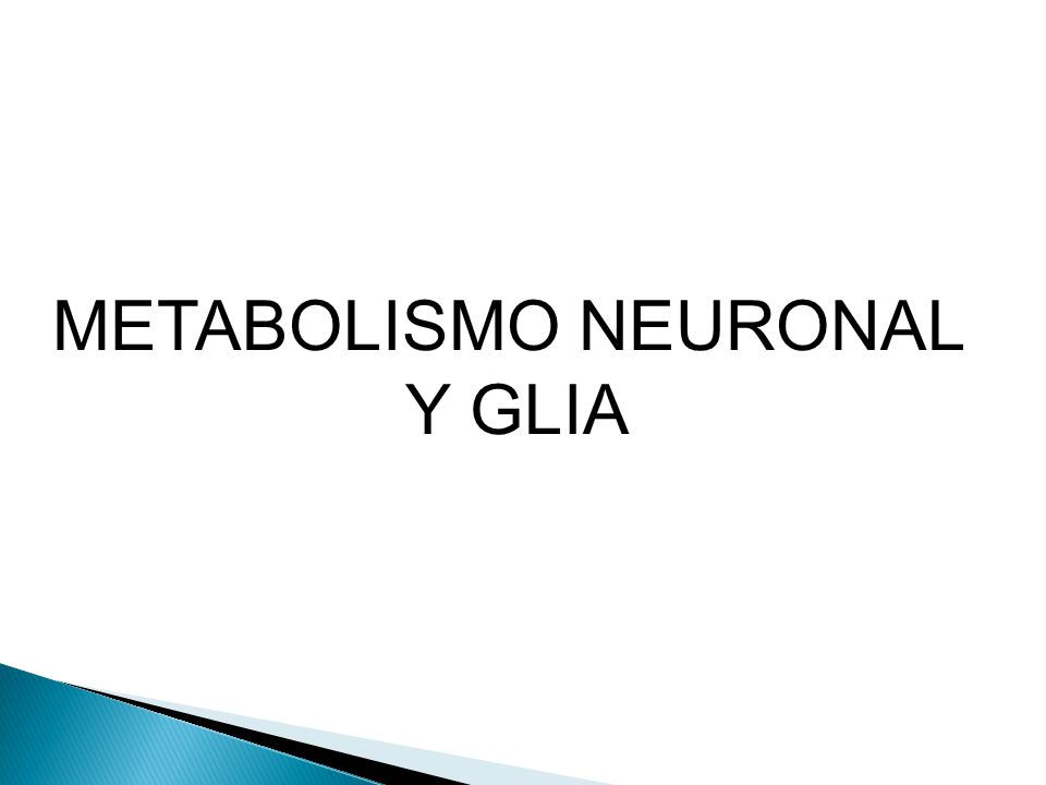 METABOLISMO NEURONAL Y GLIA