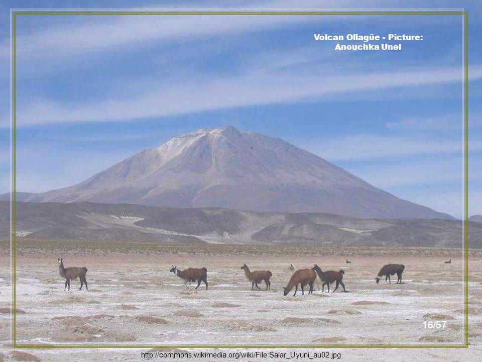 http://commons.wikimedia.org/wiki/Salar_de_Uyuni Isla del Pescado - Picture: Lion Hirth 15/57