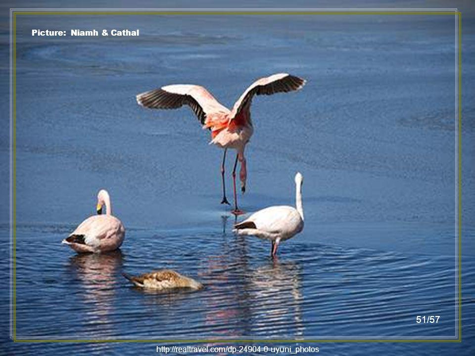 http://realtravel.com/dp-24904-0-uyuni_photos Picture: Callum & Claire 50/57