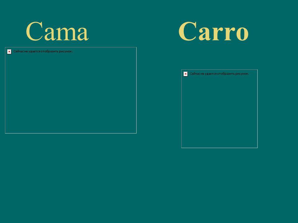 CamaCarro