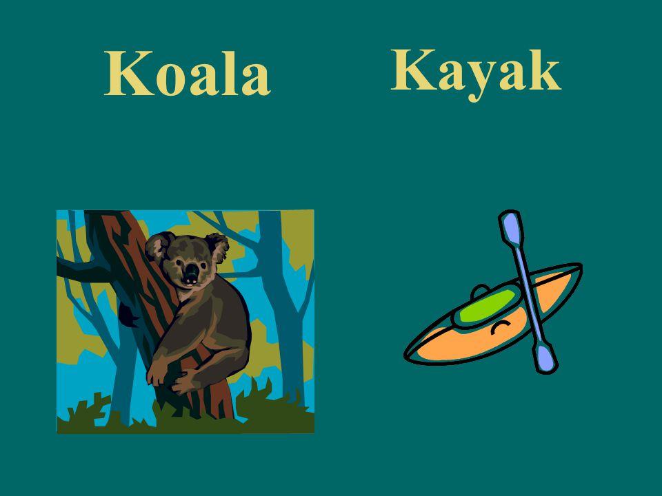 Koala Kayak