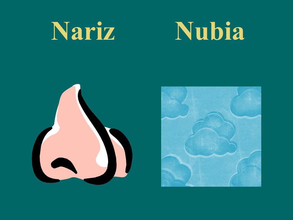 NarizNubia