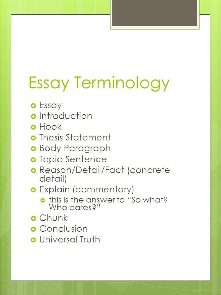 essay terminology  essay  introduction  hook  thesis  1 essay terminology