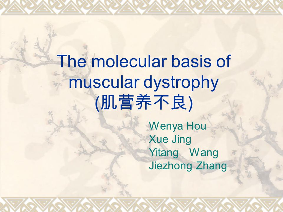 The molecular basis of muscular dystrophy ( 肌营养不良 ) Wenya Hou Xue Jing Yitang Wang Jiezhong Zhang