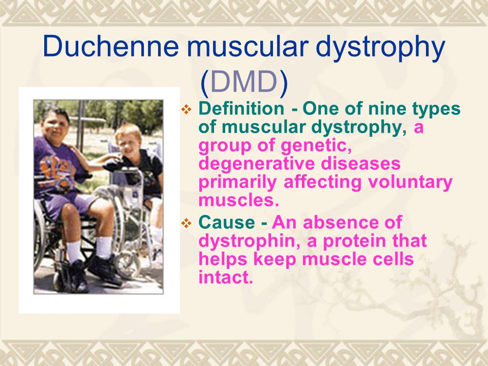 Duchenne muscular dystrophy (DMD)  Definition - One of nine types of muscular dystrophy, a group of genetic, degenerative diseases primarily affecting voluntary muscles.