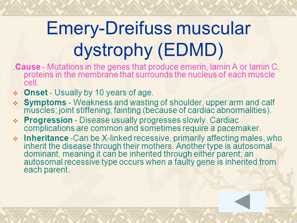Emery-Dreifuss muscular dystrophy (EDMD).Cause - Mutations in the genes that produce emerin, lamin A or lamin C, proteins in the membrane that surrounds the nucleus of each muscle cell.
