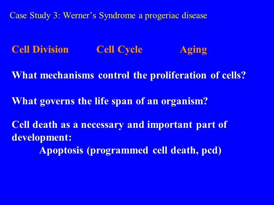 Case Study 3: Werner's Syndrome a progeriac disease Cell Division Cell Cycle Aging What mechanisms control the proliferation of cells.