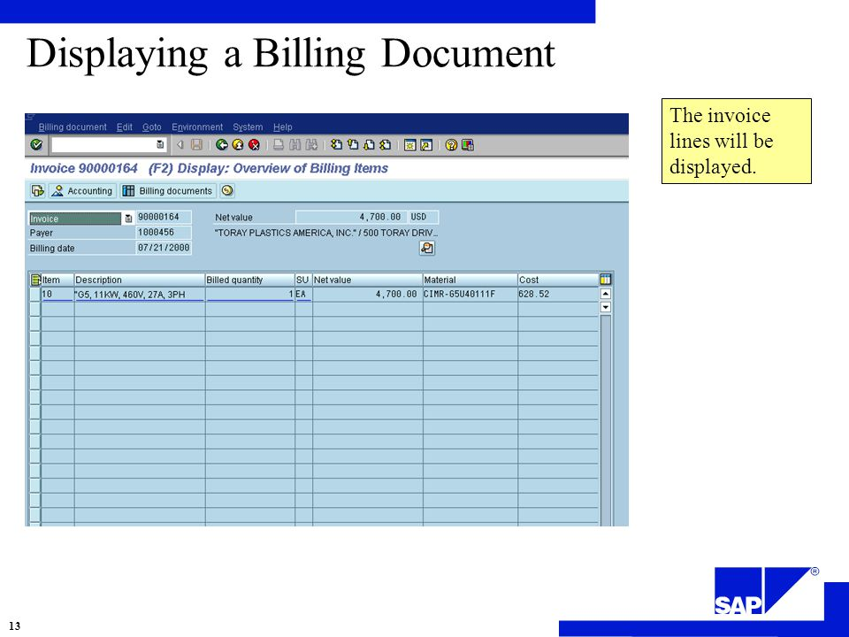 Displaying a Billing Document The invoice lines will be displayed. 13