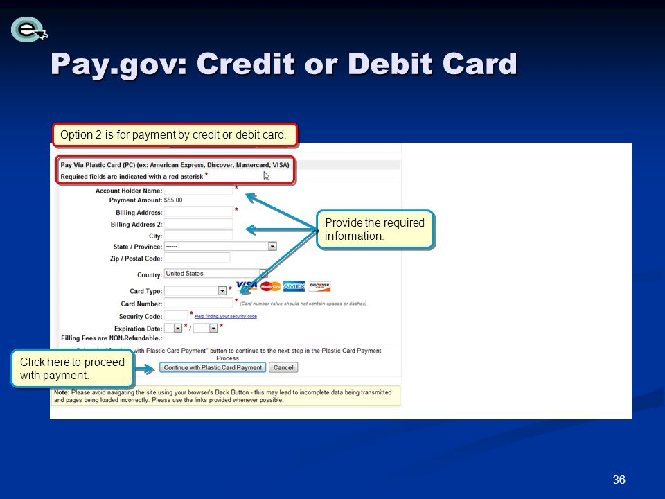 Pay.gov: Credit or Debit Card Option 2 is for payment by credit or debit card.