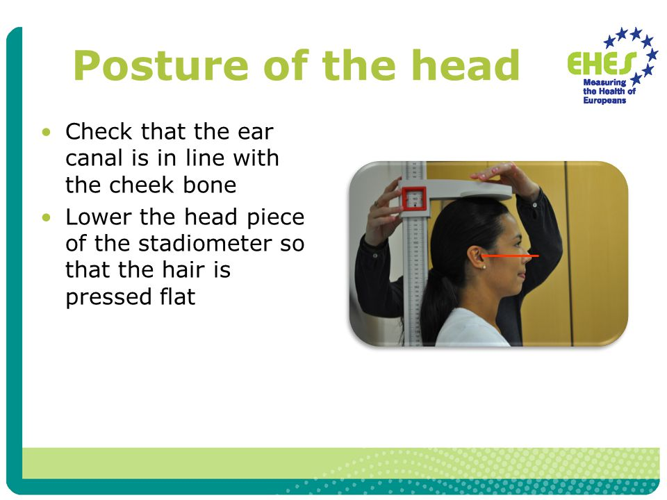 Posture of the head Check that the ear canal is in line with the cheek bone Lower the head piece of the stadiometer so that the hair is pressed flat