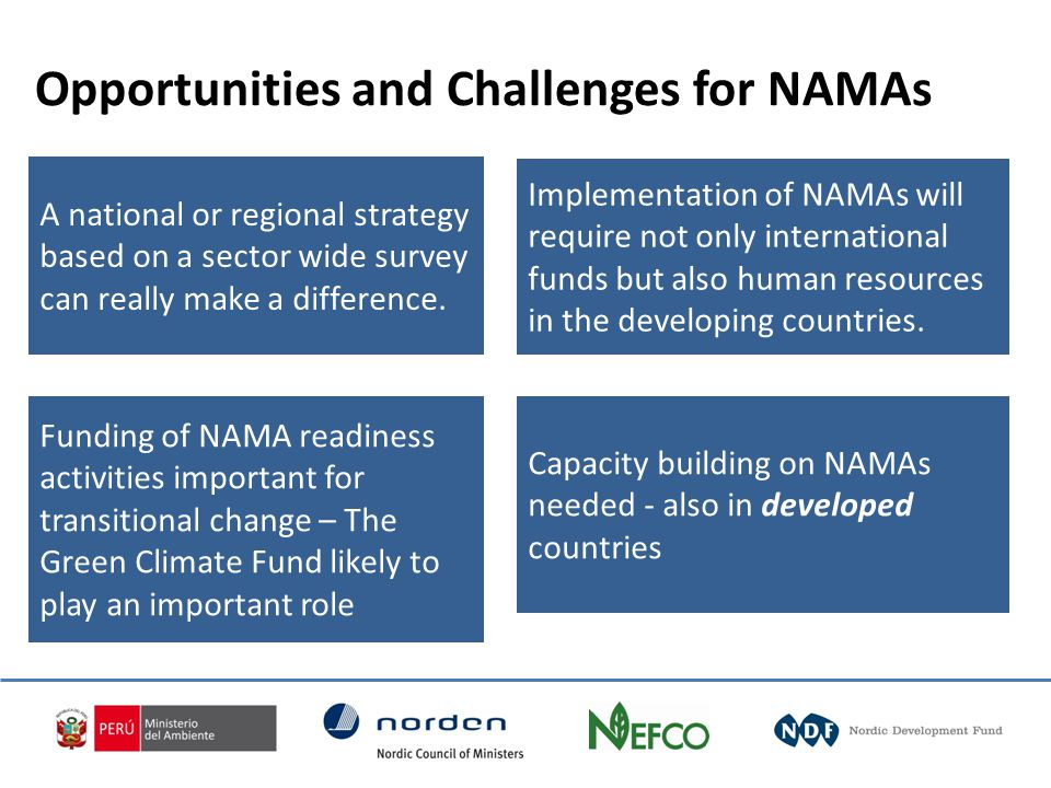 Capacity building on NAMAs needed - also in developed countries Implementation of NAMAs will require not only international funds but also human resources in the developing countries.