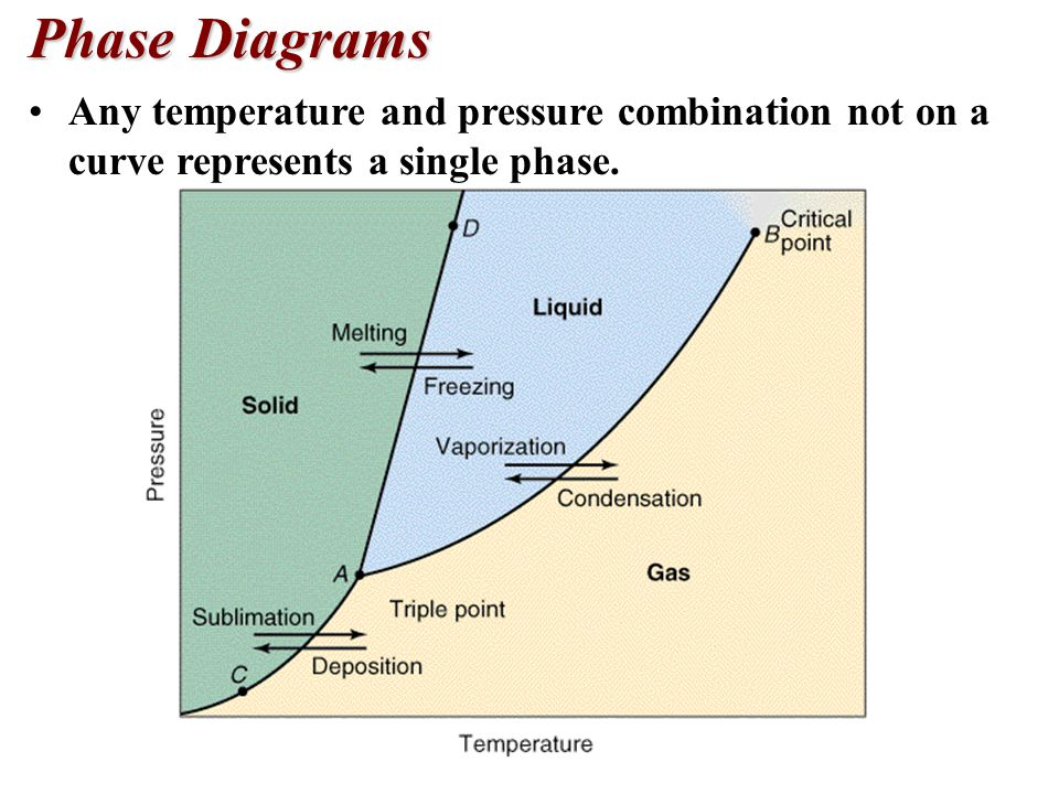 Phase Diagrams Any temperature and pressure combination not on a curve represents a single phase.