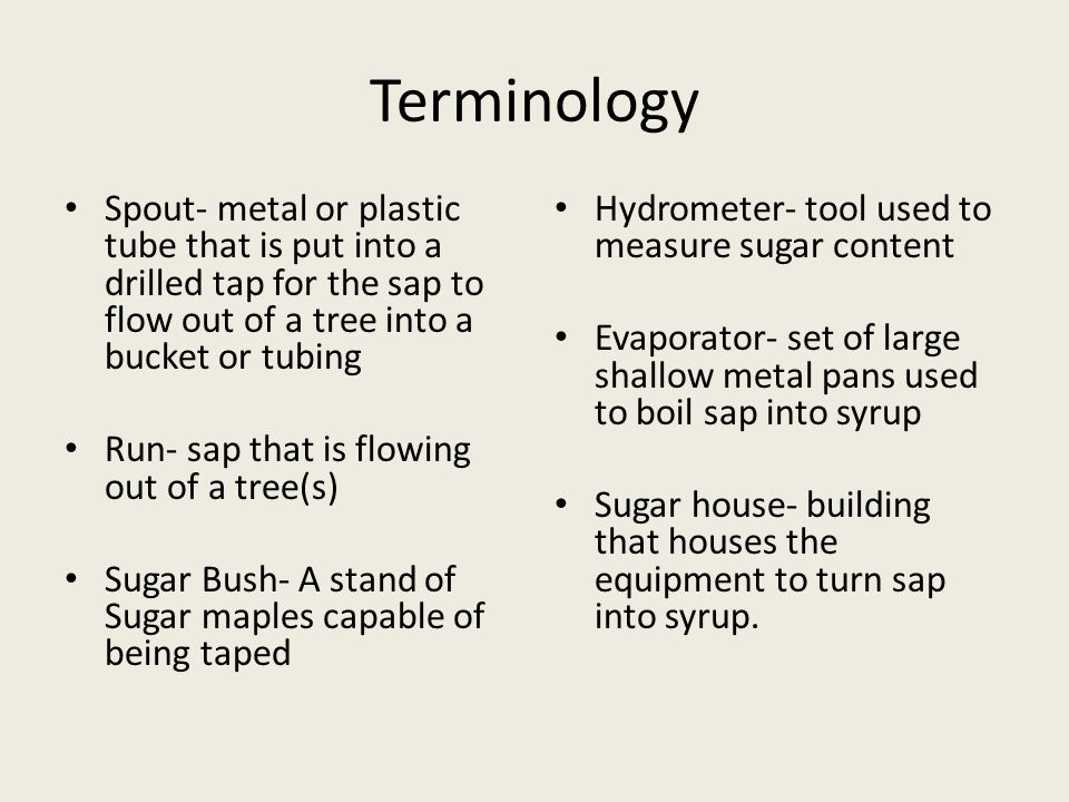 Terminology Spout- metal or plastic tube that is put into a drilled tap for the sap to flow out of a tree into a bucket or tubing Run- sap that is flowing out of a tree(s) Sugar Bush- A stand of Sugar maples capable of being taped Hydrometer- tool used to measure sugar content Evaporator- set of large shallow metal pans used to boil sap into syrup Sugar house- building that houses the equipment to turn sap into syrup.
