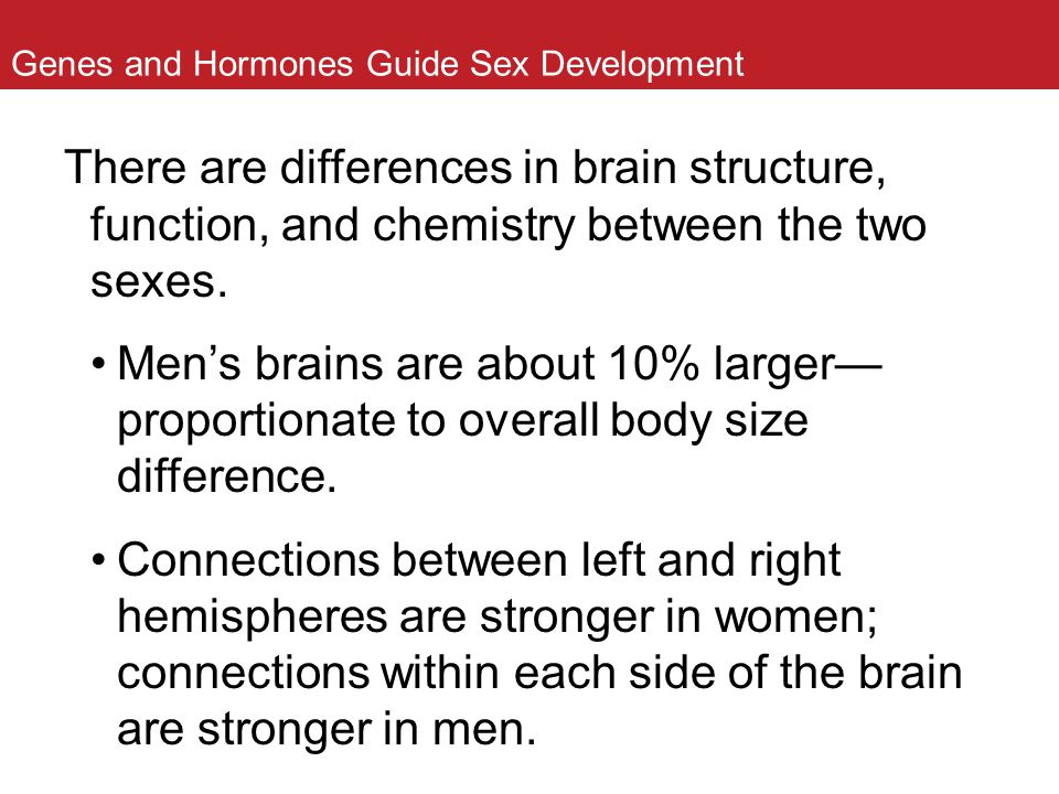 Genes and Hormones Guide Sex Development There are differences in brain structure, function, and chemistry between the two sexes. Men's brains are abo