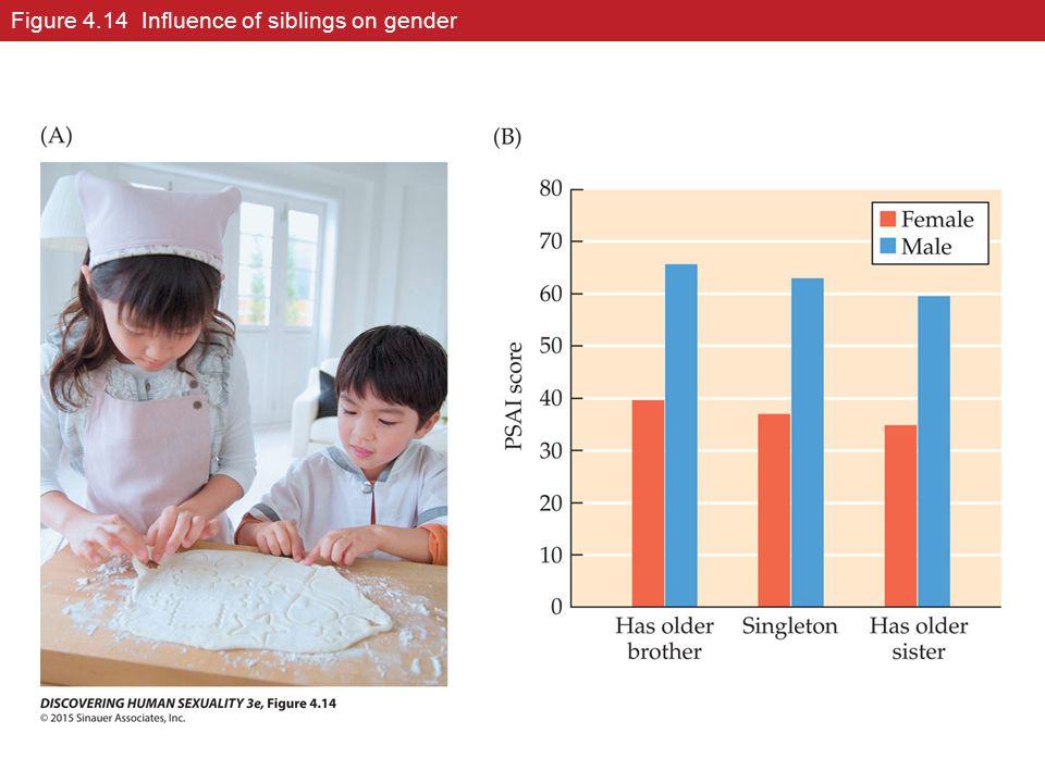 Figure 4.14 Influence of siblings on gender