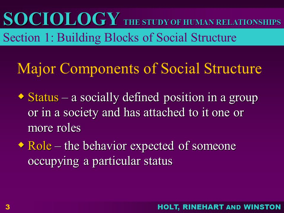 THE STUDY OF HUMAN RELATIONSHIPS SOCIOLOGY HOLT, RINEHART AND WINSTON 3 Major Components of Social Structure  Status – a socially defined position in