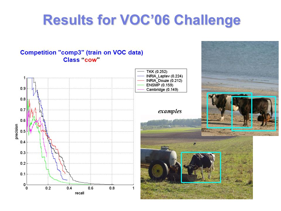 examples Results for VOC'06 Challenge Competition comp3 (train on VOC data) Class cow