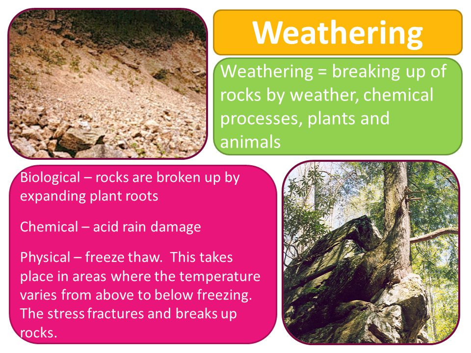 Weathering Biological – rocks are broken up by expanding plant roots Chemical – acid rain damage Physical – freeze thaw.