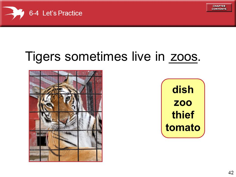 42 Tigers sometimes live in ____. zoos 6-4 Let's Practice dish zoo thief tomato