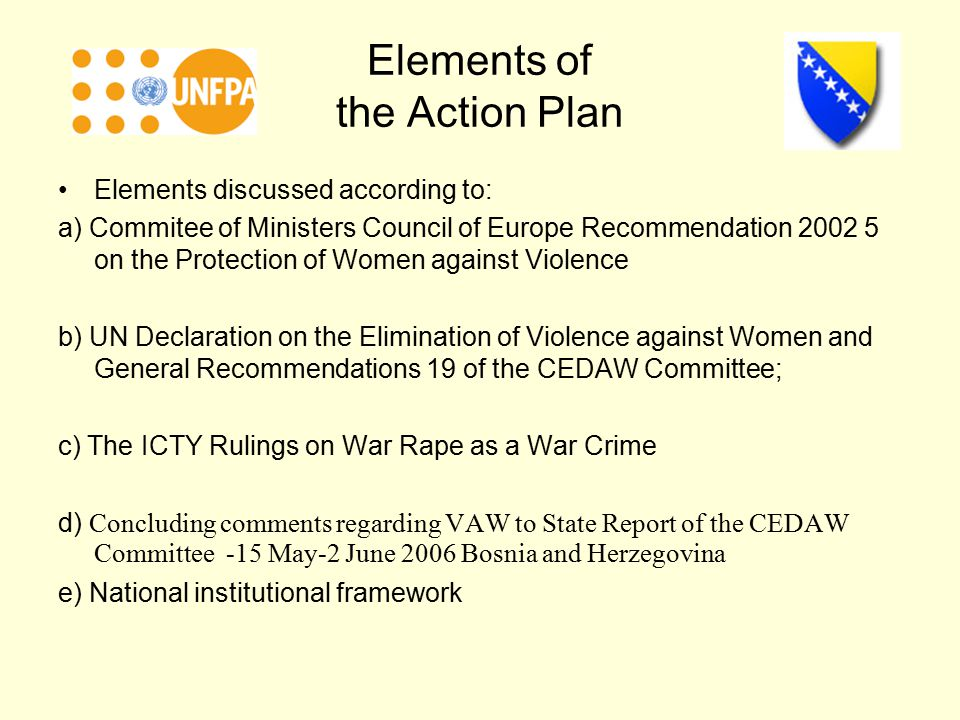 Elements of the Action Plan Elements discussed according to: a) Commitee of Ministers Council of Europe Recommendation on the Protection of Women against Violence b) UN Declaration on the Elimination of Violence against Women and General Recommendations 19 of the CEDAW Committee; c) The ICTY Rulings on War Rape as a War Crime d) Concluding comments regarding VAW to State Report of the CEDAW Committee -15 May-2 June 2006 Bosnia and Herzegovina e) National institutional framework