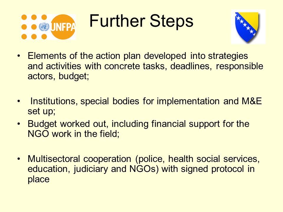 Further Steps Elements of the action plan developed into strategies and activities with concrete tasks, deadlines, responsible actors, budget; Institutions, special bodies for implementation and M&E set up; Budget worked out, including financial support for the NGO work in the field; Multisectoral cooperation (police, health social services, education, judiciary and NGOs) with signed protocol in place
