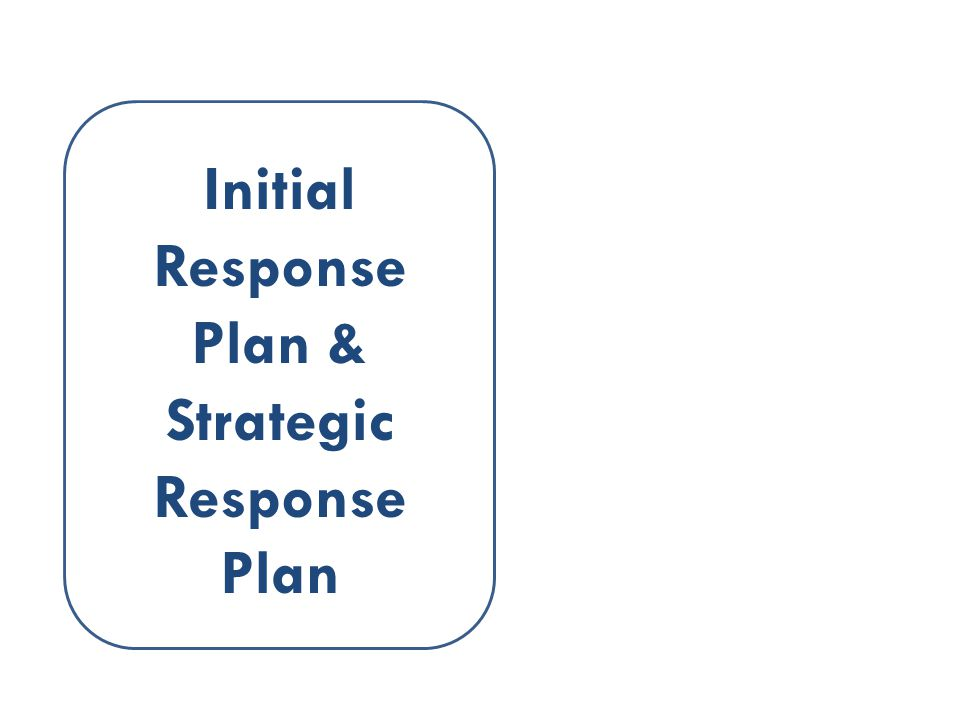 Initial Response Plan & Strategic Response Plan