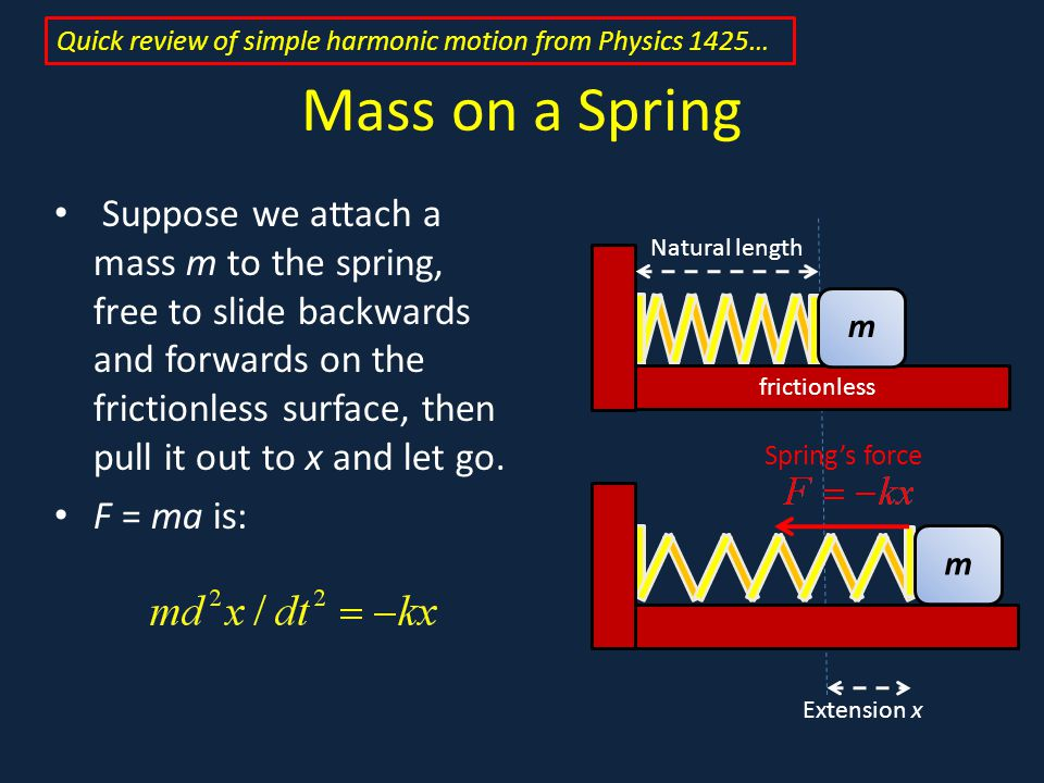Mass on a Spring Suppose we attach a mass m to the spring, free to slide backwards and forwards on the frictionless surface, then pull it out to x and let go.