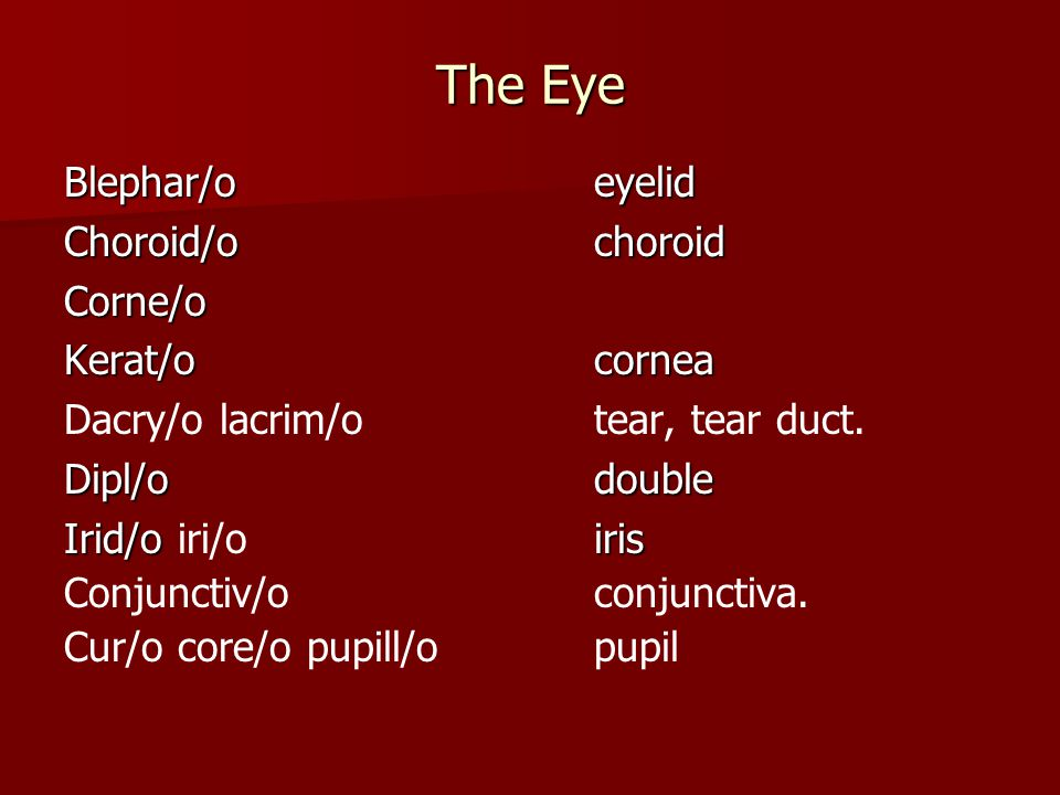 The Special Senses Eye and Ear Lecture 10. The special senses of ...