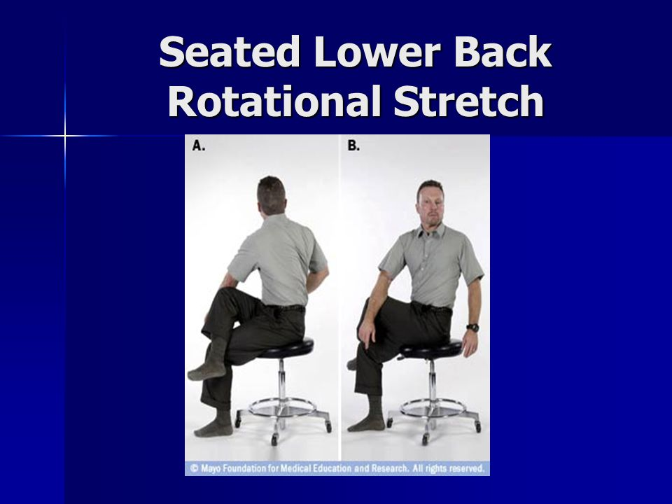 Seated Lower Back Rotational Stretch