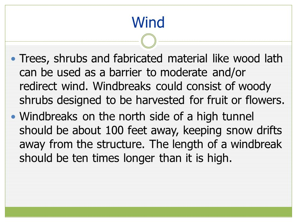 Wind Trees, shrubs and fabricated material like wood lath can be used as a barrier to moderate and/or redirect wind.