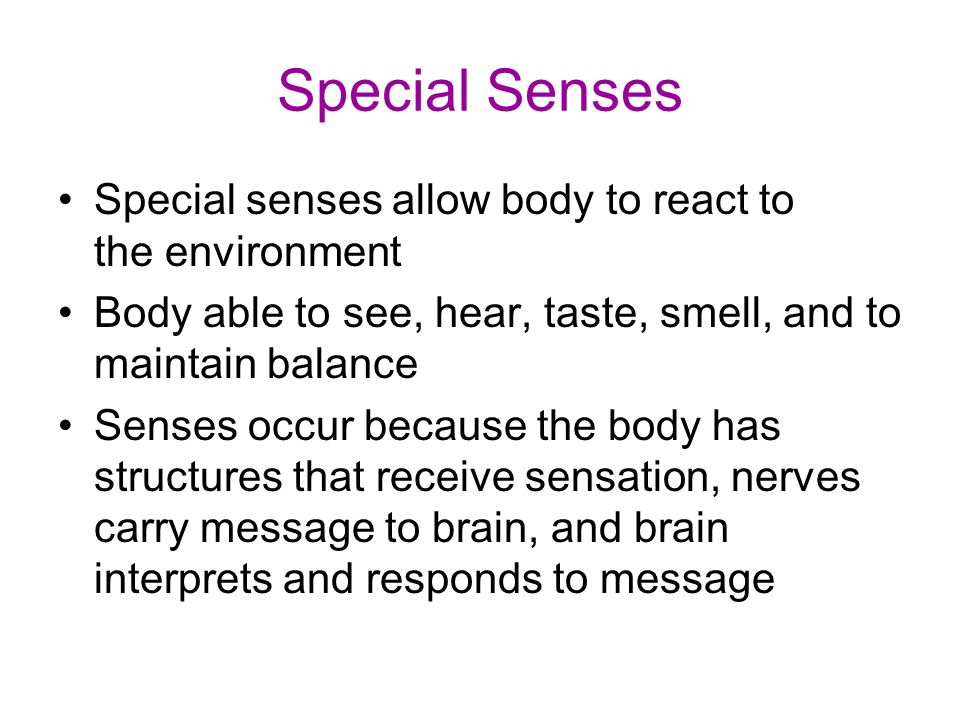 """Turn to Chapter 8: Special Senses Complete the worksheet """" I See ..."""