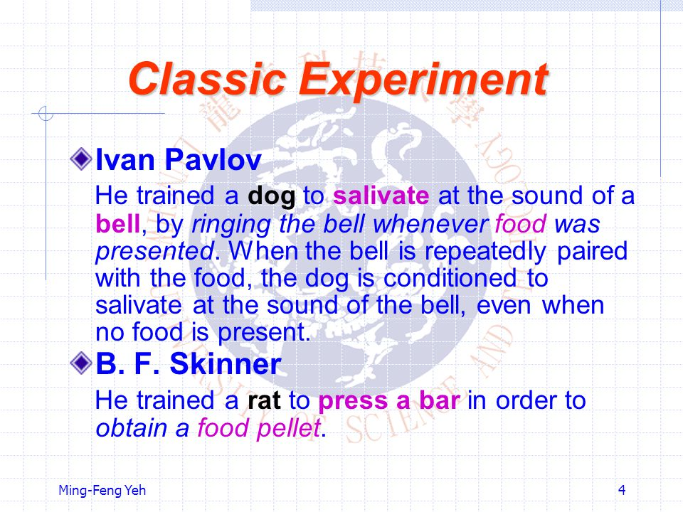 Ming-Feng Yeh4 Classic Experiment Ivan Pavlov He trained a dog to salivate at the sound of a bell, by ringing the bell whenever food was presented.