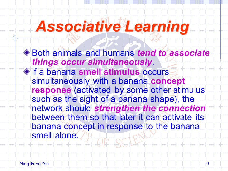 Ming-Feng Yeh9 Associative Learning Both animals and humans tend to associate things occur simultaneously.