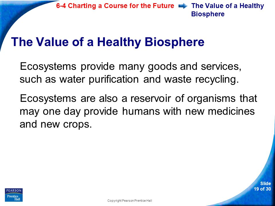 6-4 Charting a Course for the Future Slide 19 of 30 Copyright Pearson Prentice Hall The Value of a Healthy Biosphere Ecosystems provide many goods and services, such as water purification and waste recycling.