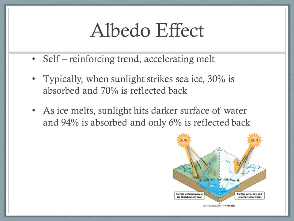 Albedo Effect Self – reinforcing trend, accelerating melt Typically, when sunlight strikes sea ice, 30% is absorbed and 70% is reflected back As ice melts, sunlight hits darker surface of water and 94% is absorbed and only 6% is reflected back