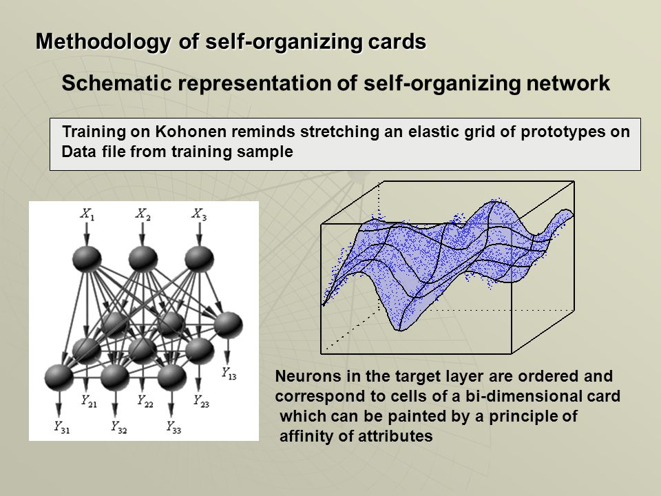 Schematic representation of self-organizing network Methodology of self-organizing cards Neurons in the target layer are ordered and correspond to cells of a bi-dimensional card which can be painted by a principle of affinity of attributes Training on Kohonen reminds stretching an elastic grid of prototypes on Data file from training sample