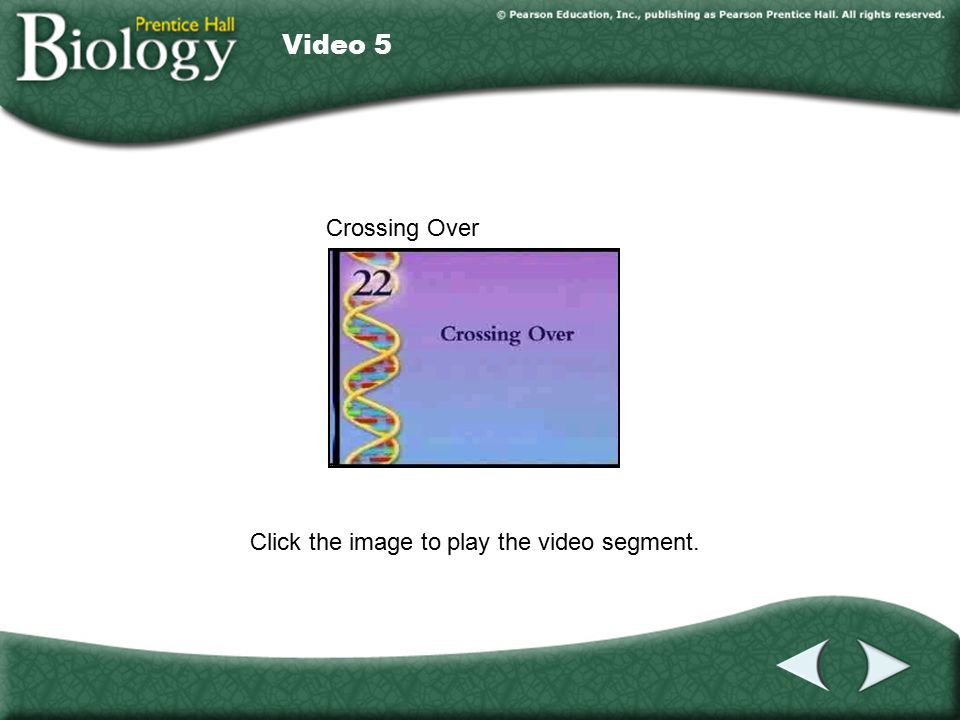 Video 5 Click the image to play the video segment. Video 5 Crossing Over