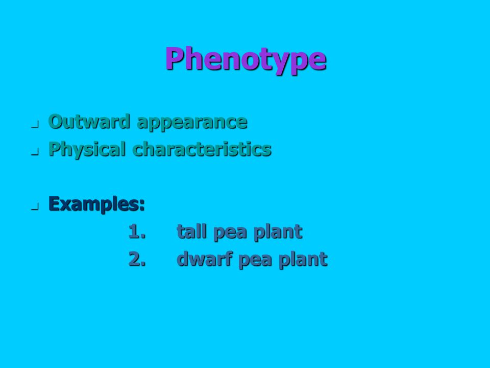 Phenotype Outward appearance Outward appearance Physical characteristics Physical characteristics Examples: Examples: 1.tall pea plant 2.dwarf pea plant