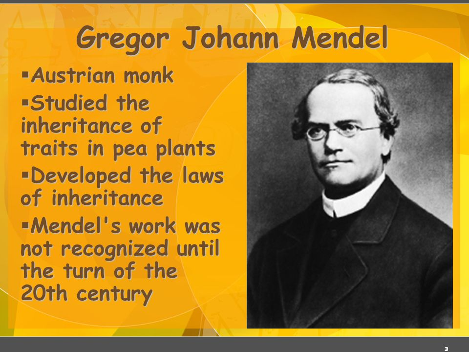 2 Gregor Mendel ( ) Responsible for the Laws governing Inheritance of Traits Genetics Father of Genetics