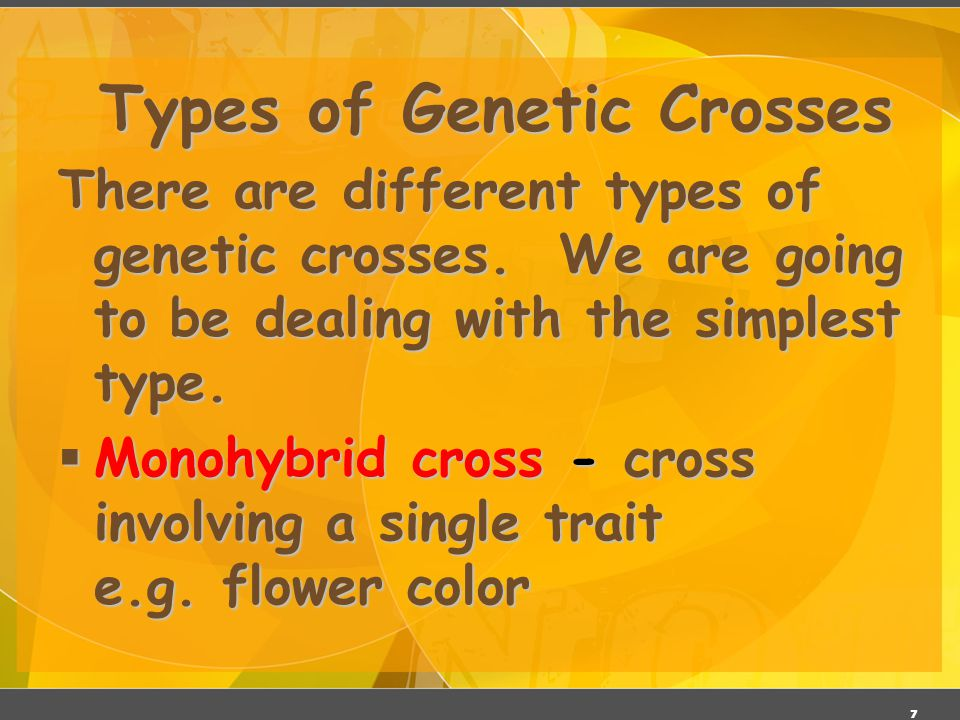6 Genetic Terminology  Trait - any characteristic that can be passed from parent to offspring.