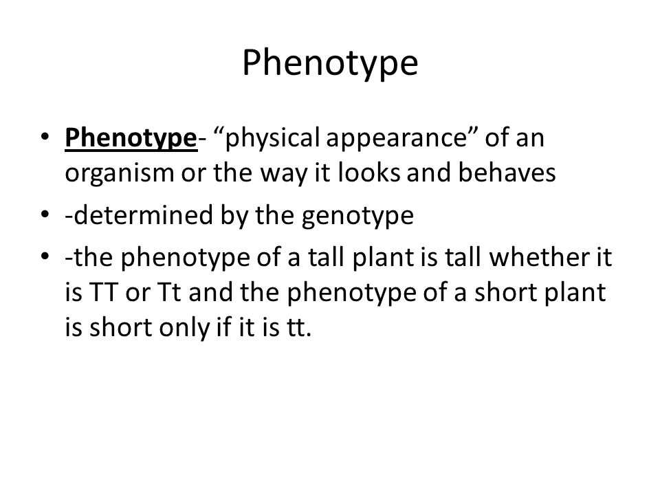 Phenotype Phenotype- physical appearance of an organism or the way it looks and behaves -determined by the genotype -the phenotype of a tall plant is tall whether it is TT or Tt and the phenotype of a short plant is short only if it is tt.
